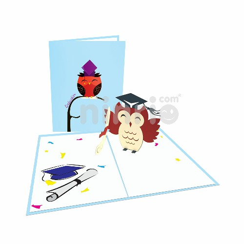 Owl Graduation Card – Congratulation 3D Popup Card