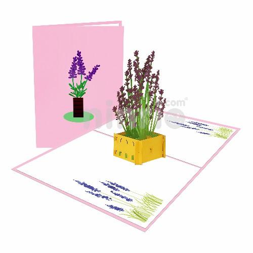 Thiệp hoa oải hương - Thiệp pop up hoa