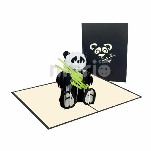 Thiệp 3D Gấu trúc - Thiệp 3D động vật