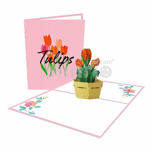 Thiệp hoa tulip 3D - Thiệp pop up hoa