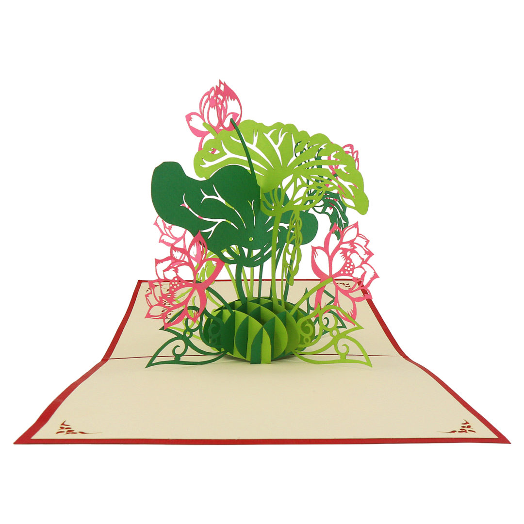 Nelumbo nucifera Card - Flower 3D Card