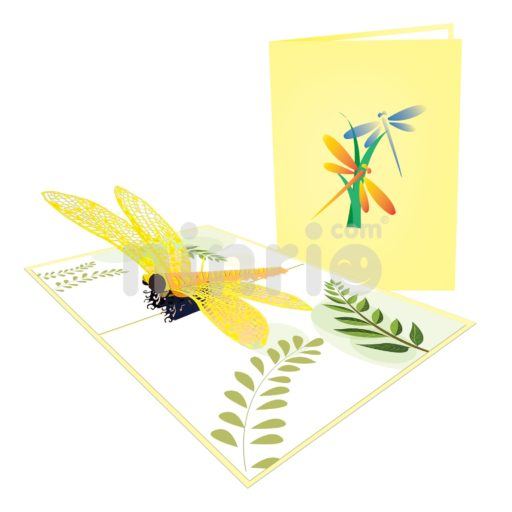 Dragonfly Card – Animal 3D Popup Card